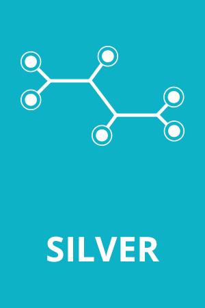 silver01_01